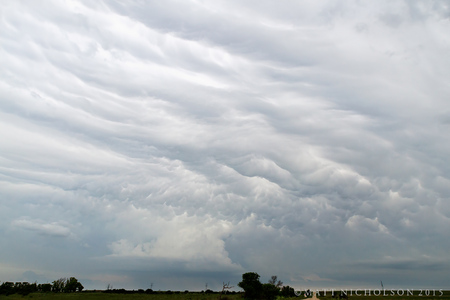 © Matt Nicholson 2015